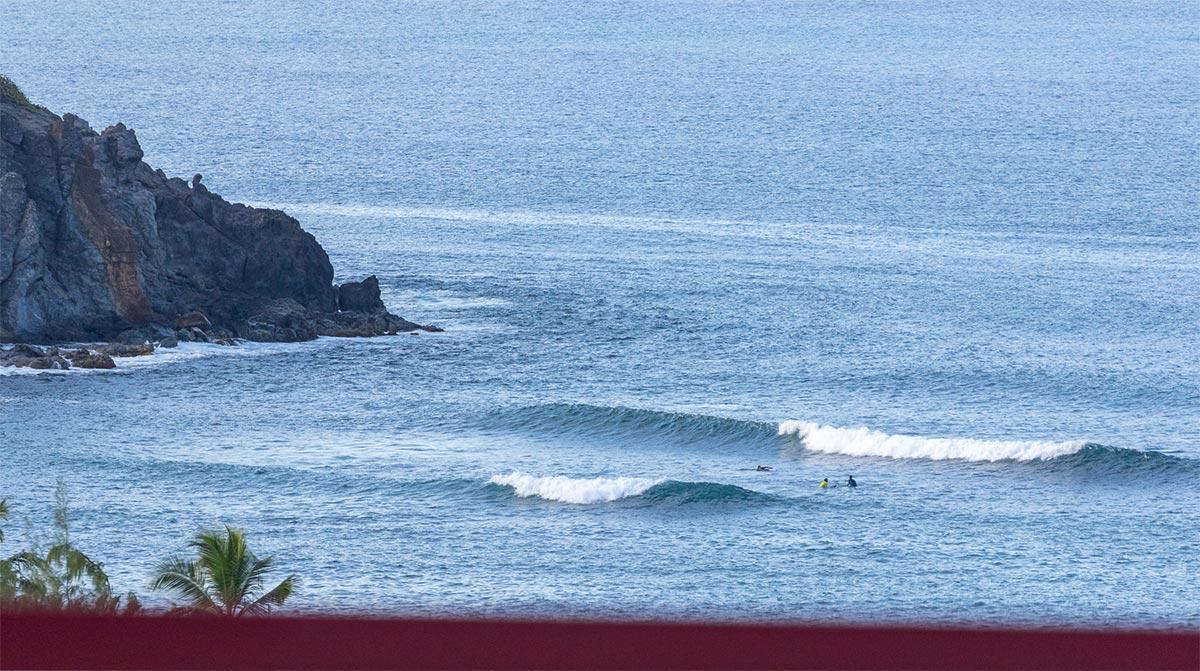 LOCATION-SURF-TRIP-TARTANE-MARTINIQUE